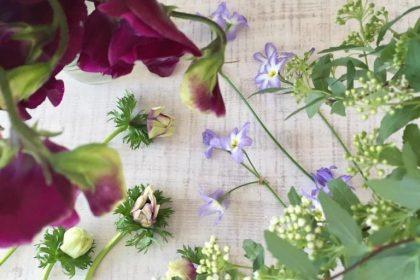 季節 新鮮 花 お届け 花の不定期便 お知らせ 西武線池袋線 ひばりが丘 文京区