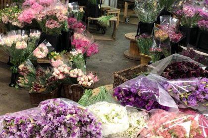 花のある生活 花のある暮らし 花の不定期便