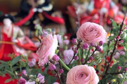 雛祭り 孫 初節句 両家 お祝い 花