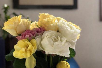 花の不定期便 新年度