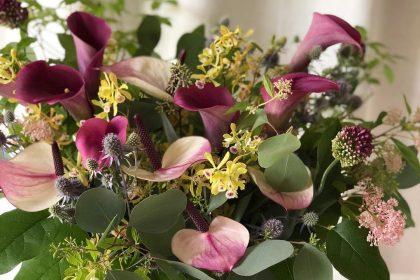 夏 暑さ デザイン 就任 祝い 生花 フラワーアレンジメント